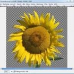 GIMP: Bereiche ähnlicher Farben auswählen