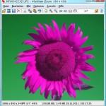 IrfanView: Farbkanal eines Fotos vertauschen