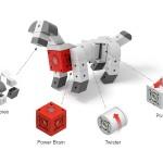 Haustiere, Roboter…: Kreativ bauen mit TinkerBots