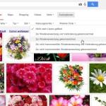 Google: Nach Bildern mit bestimmten Lizenzen suchen