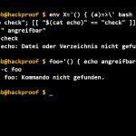 Shellshock-Sicherheits-Update jetzt auch für OSX