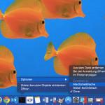 Mac: Fenster auf allen virtuellen Desktops anzeigen