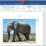 Eigenschaften von Bildern in Word schneller bearbeiten